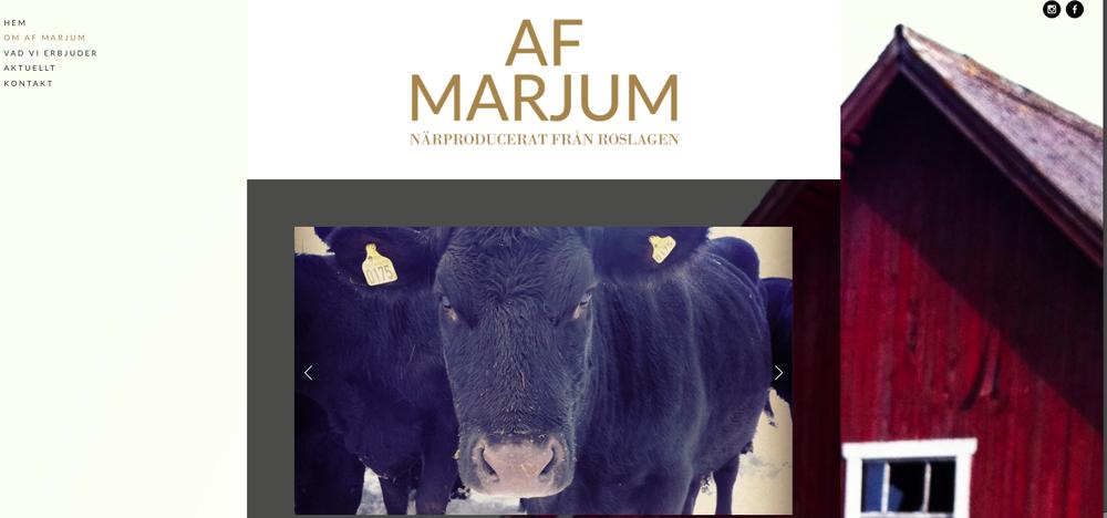 www.afmarjum.se