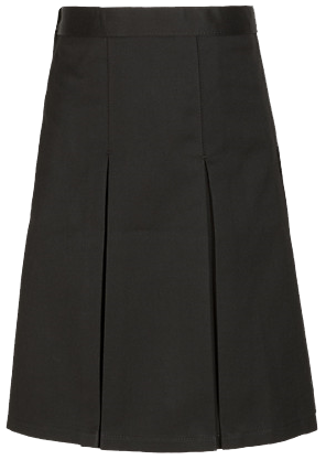 2 pleat skirt