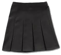 4 pleat skirt