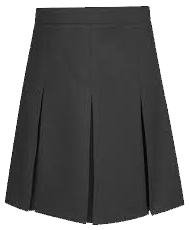 3 pleat skirt