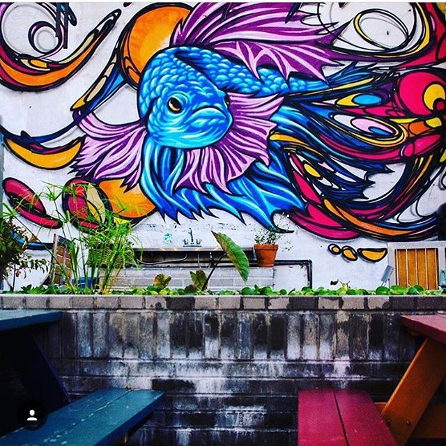 Throwback to @falansai backyard with @mrprvrt for one of our first collaborations! Help Falansai win @bushwickdaily #bestbackyard contest and vote now!🤙🤙