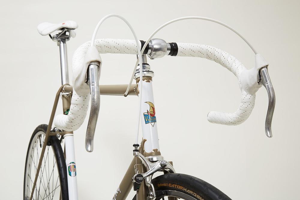 Viking_Bike_Shot1524.jpg