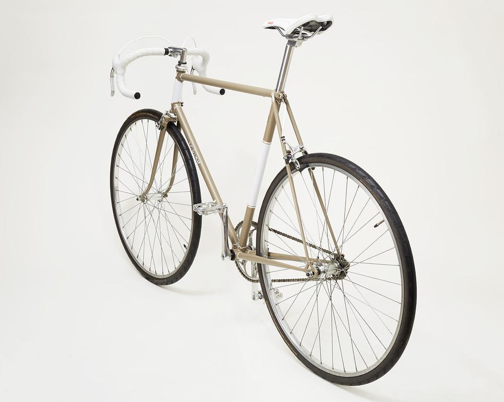 Viking_Bike_Shot1494_Reframed.jpg