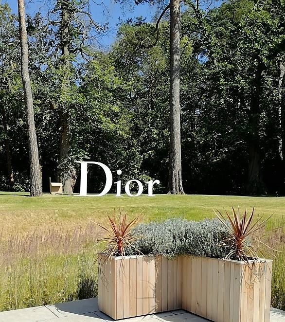 dior  new 3.jpg