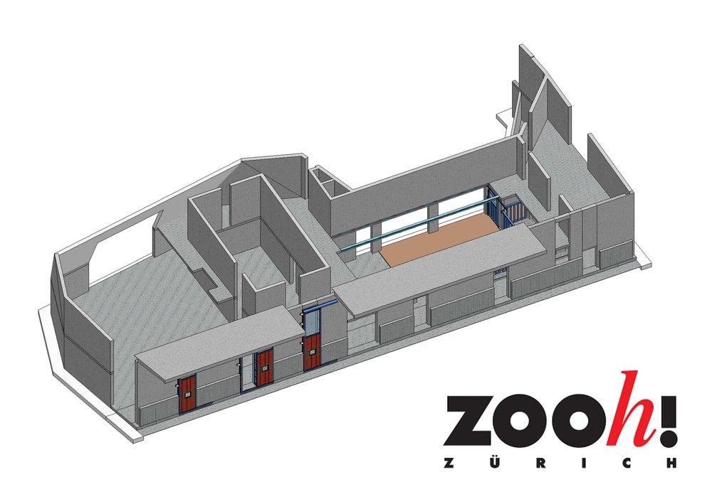 Nashorn_Tore_Zoo-Zürich.jpg