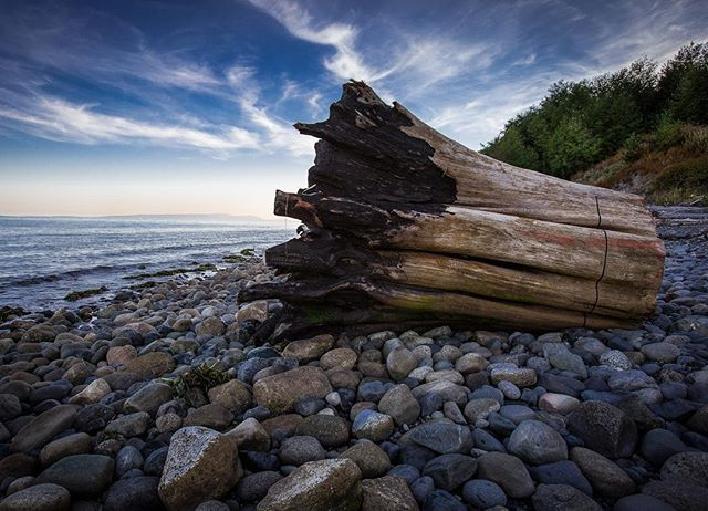 A shot from an evening stroll along the Secret Beach in that little slice of Pacific Northwest heaven called Point Roberts. . . #washingtonstate #pnw #washington  #pnwonderland #adventure #pacificnorthwest #travel #northwest  #vancouver #canada #vancity #britishcolumbia #bc #yvr  #VancouverCanada #photography #travelphotography  #travelgram #wanderlust #instatravel #nature #photooftheday #traveler #naturephotography #vacation #photographer #traveltheworld #landscape #travelphoto #explore