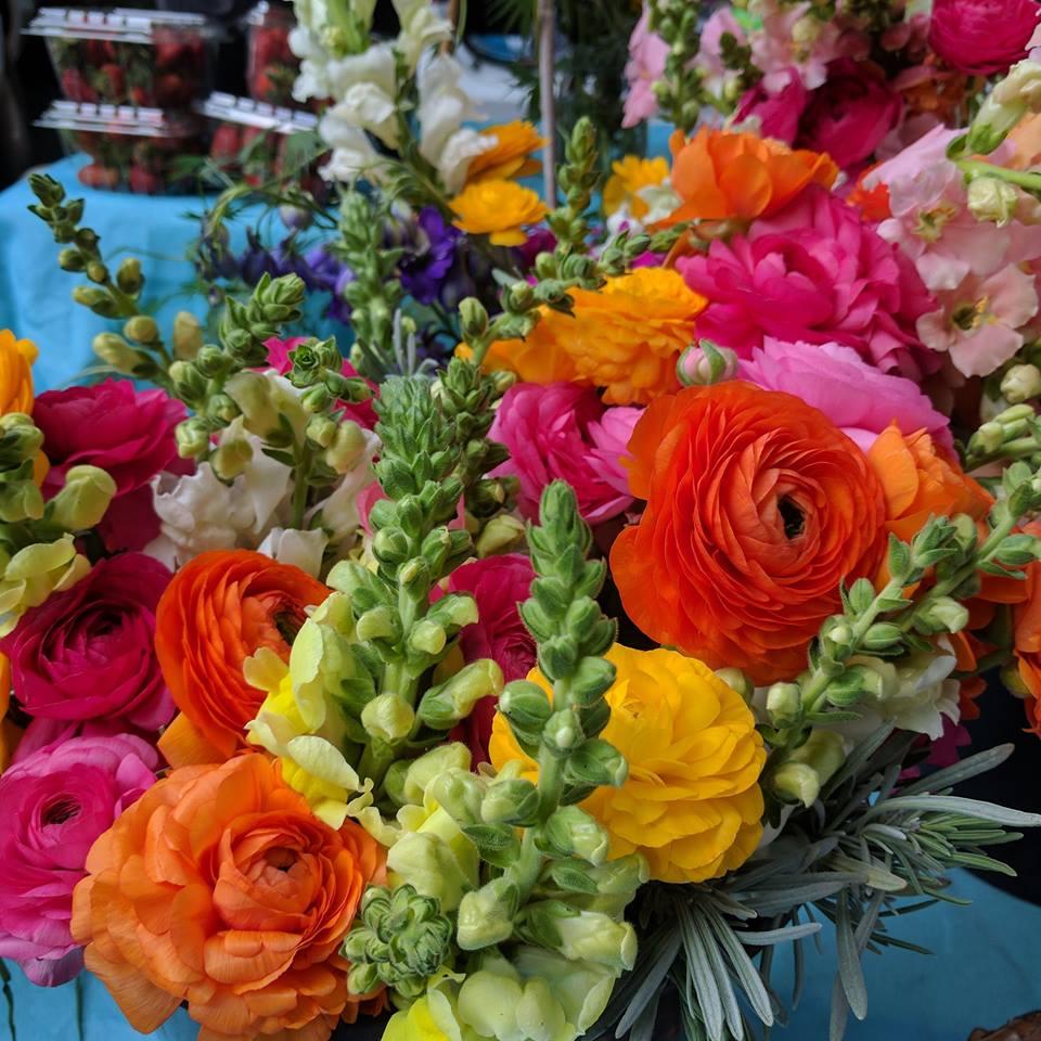 Flowers2017.jpg