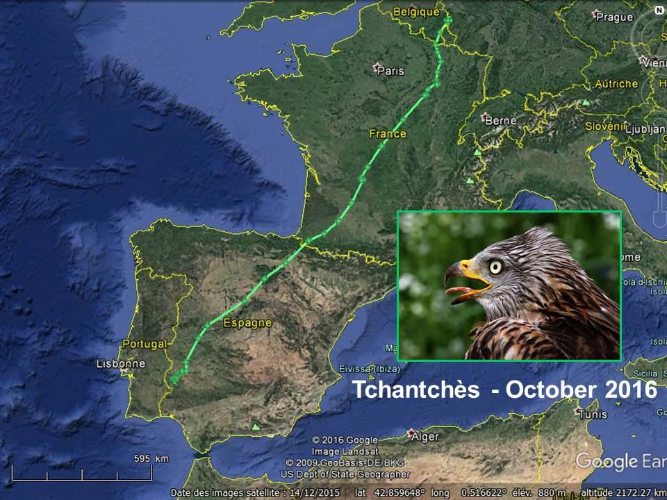 Trajet parcouru par Tchantchès, de Heppenback (B) à Barcarrota (E), en octobre 2016