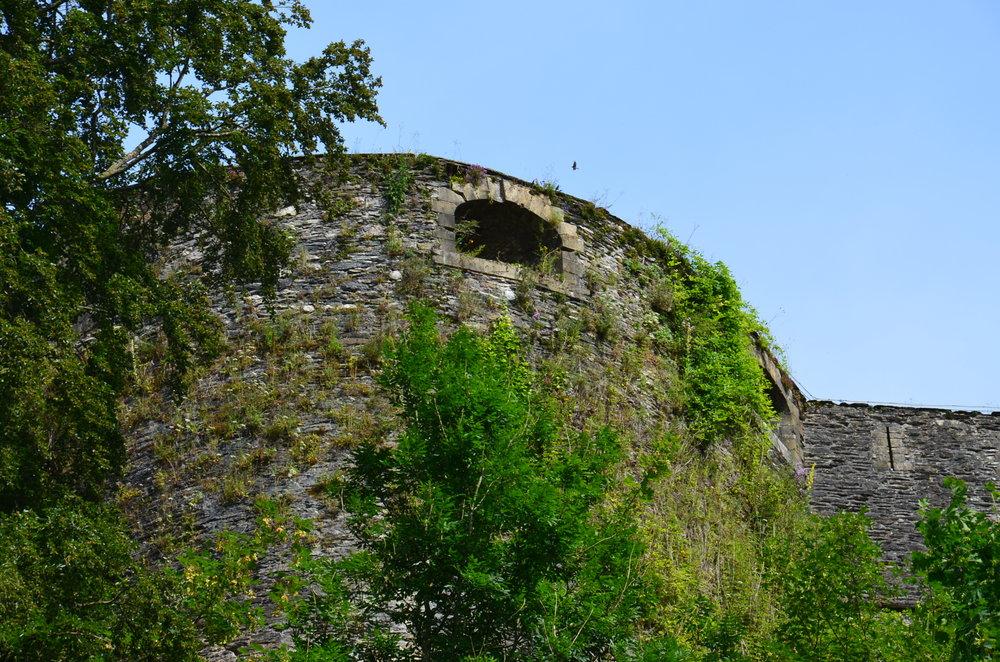 Mur du château de Bouillon (JP Jacob)
