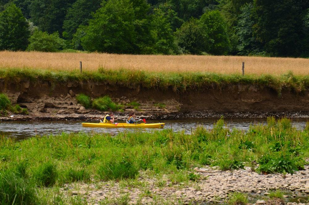 Berge de l'Ourthe détruite par les inondation et dérangement par les kayaks (JP Jacob)