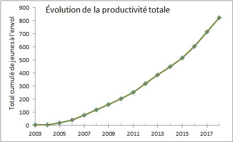 productivite_totale.jpg