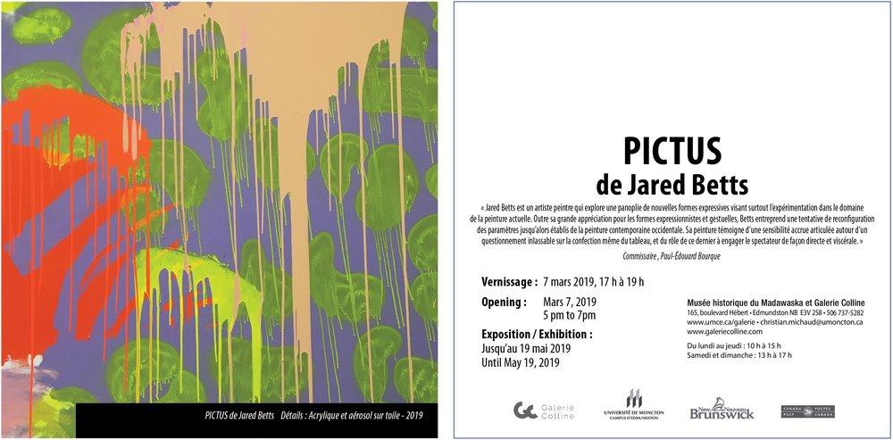 Galeriecolline_PICTUS-01A.jpg