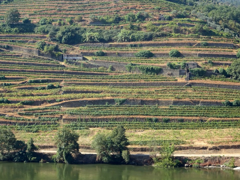 DOURO RIVER VALLEY, PORTUGAL - M.QUIGLEY
