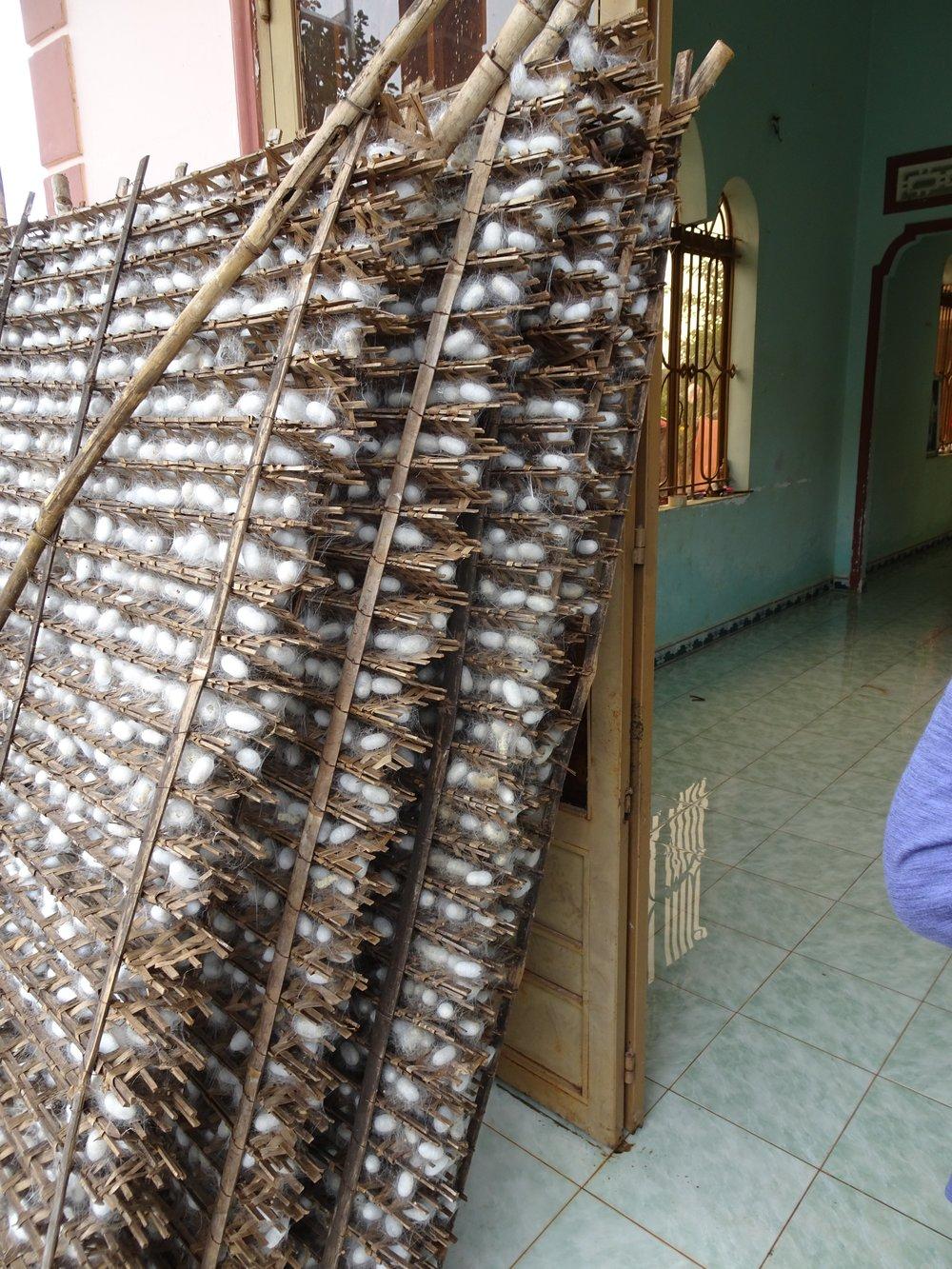 silk making in the central highlands, vietnam - m.quigley