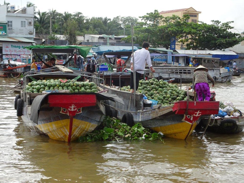 mekong river delta, vietnam - m.quigley