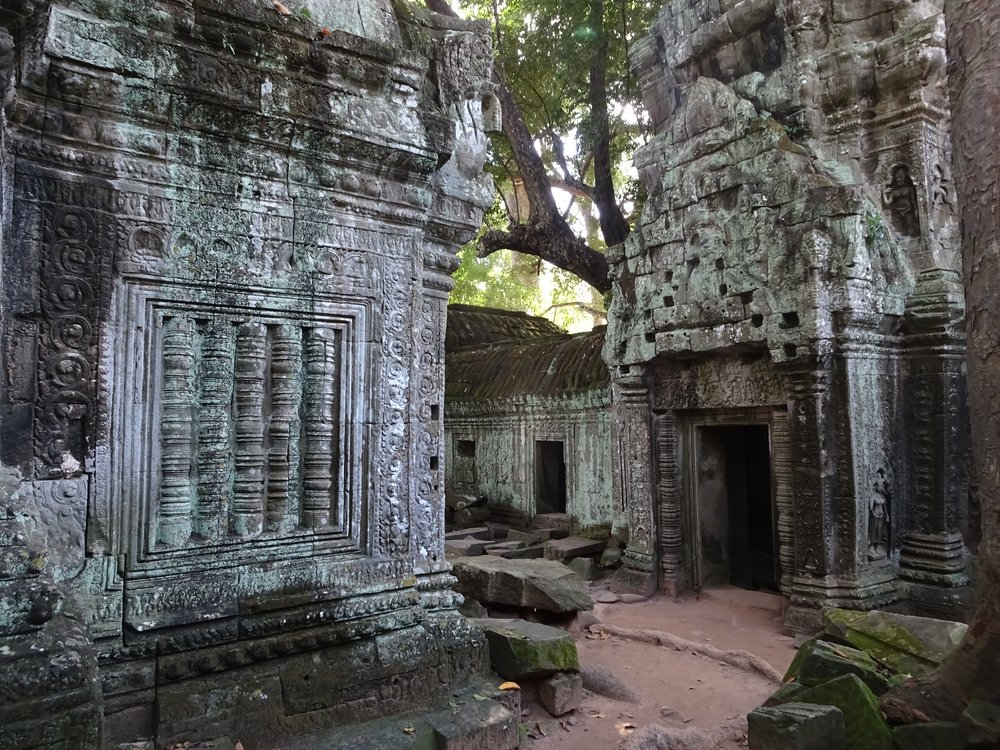 TA PROHM,  ANGKOR WAT TEMPLE COMPLEX  , SIEM REAP, CAMBODIA - M.QUIGLEY