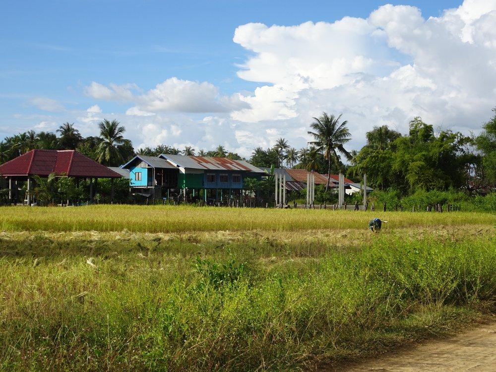 don det, 4000 islands, laos - m.quigley