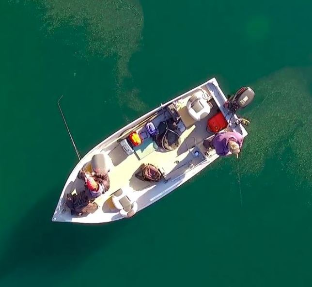 fishing with drones using uavs to help find fish.JPG