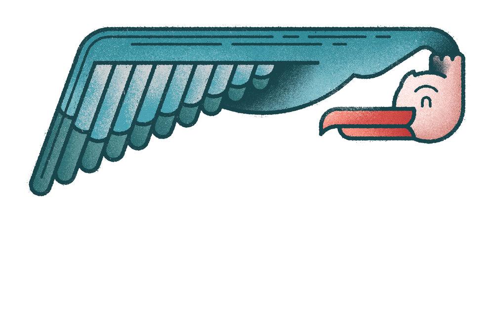 seagull_web.jpg