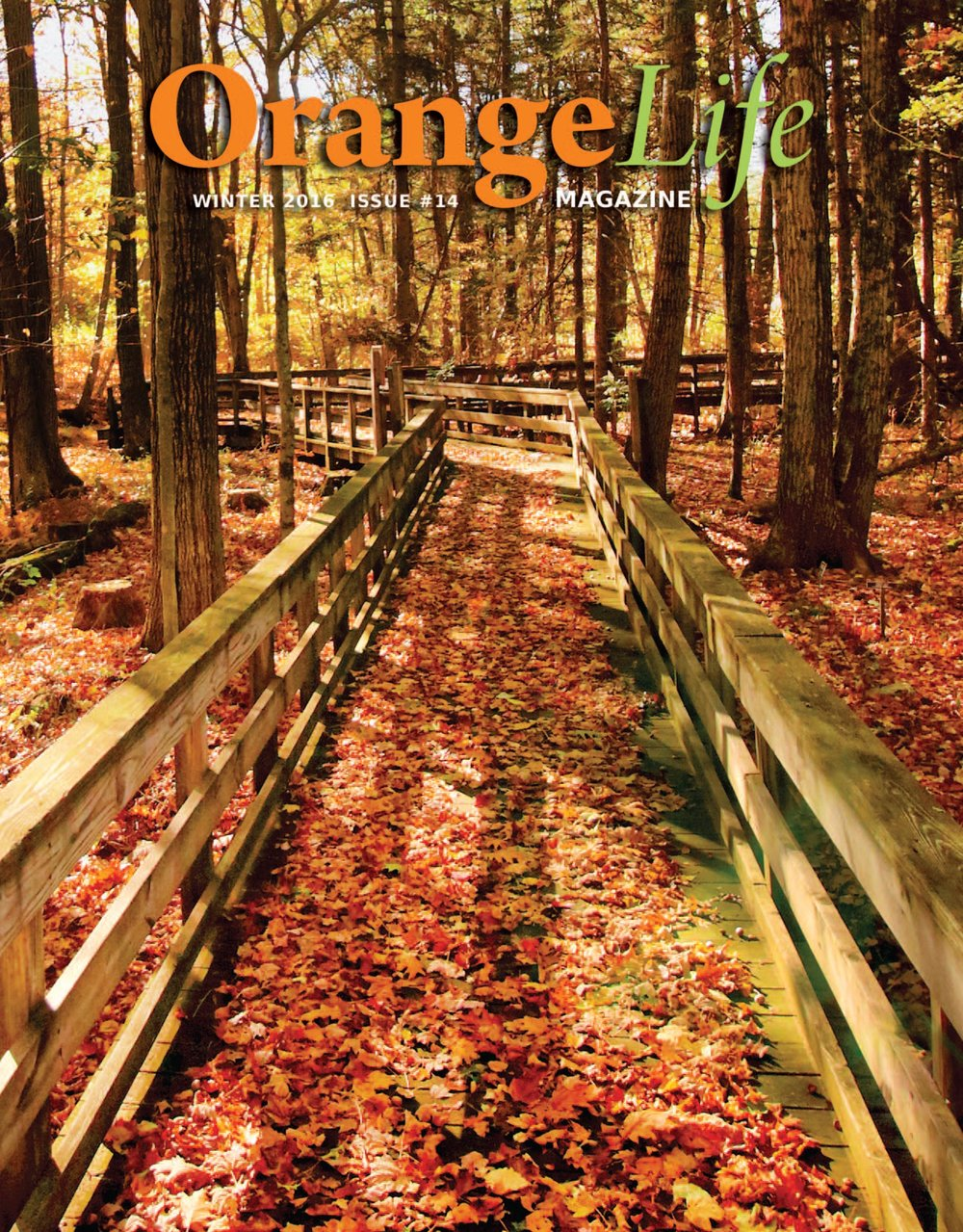 Winter Issue - 2016