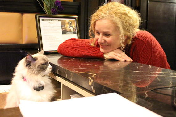 Rebecca checks in with Matilda, the hotel cat who can often be found at the front desk.