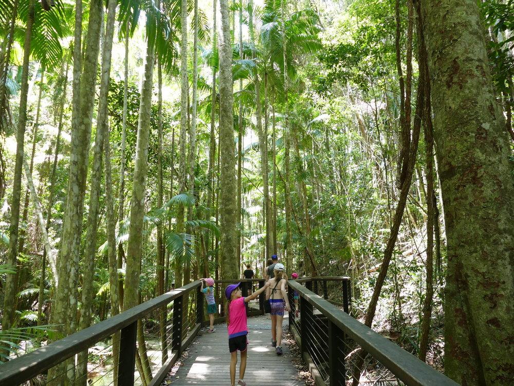 La forêt de cette île est préservée.