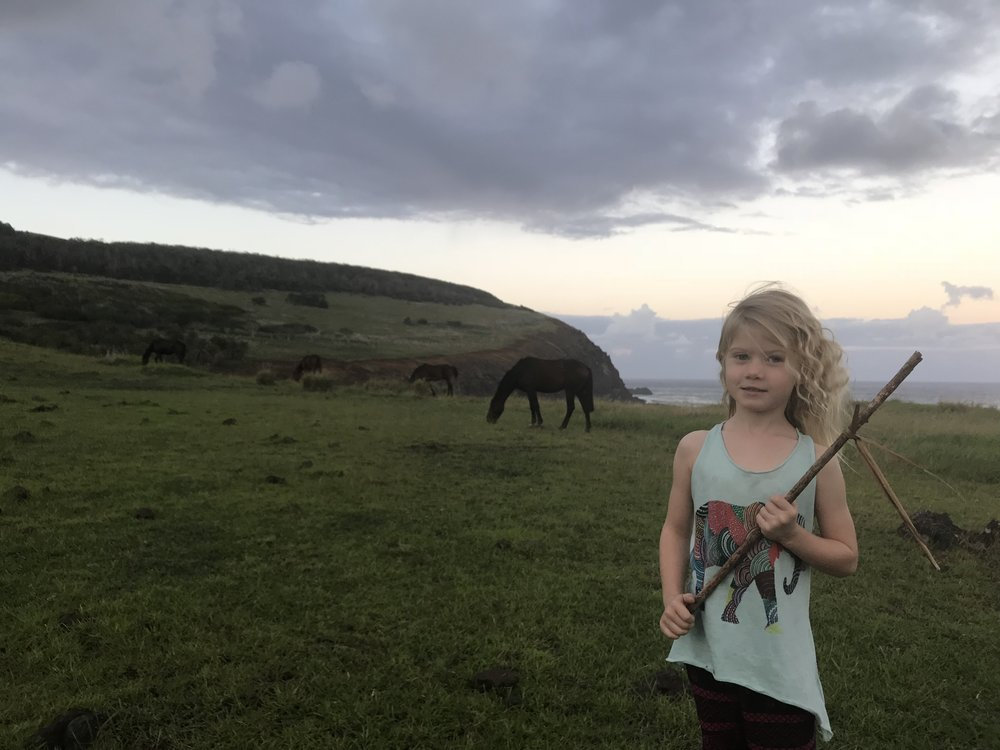 Les chevaux en liberté ont bien impressionnée notre Emmy, et toute la bande!
