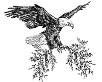 Boudoir Logo - Eagle.jpg