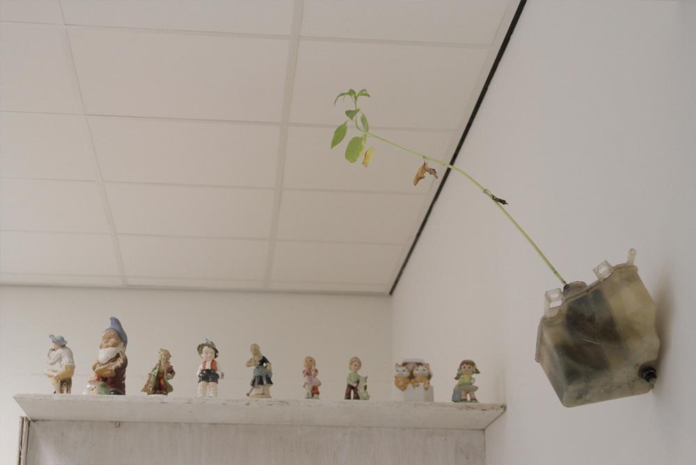 plantsfigurines.jpg
