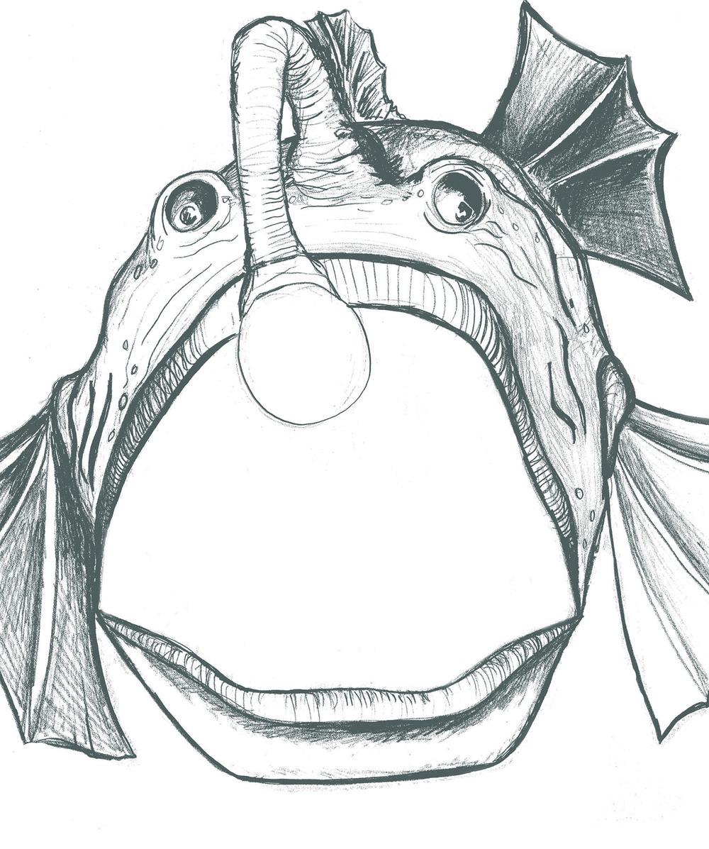 Anglerfishdrawing.jpg