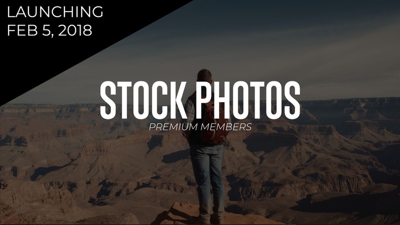 500+ Royalty Free Stock Photos