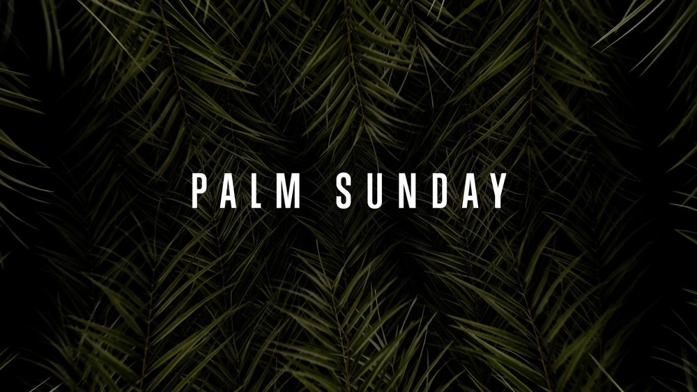 PALM SUNDAY - 10 Worship Loops + 1 CountdownWant save even more? Premium Members get everything VMC has to offer for $25/Month! Join Today!Available in 4K, HD Triplewide, HD Doublewide, HD 1080, HD 720, SD, SD Triplewide, SD Doublewide, Stills, and 5 Minute Countdown.