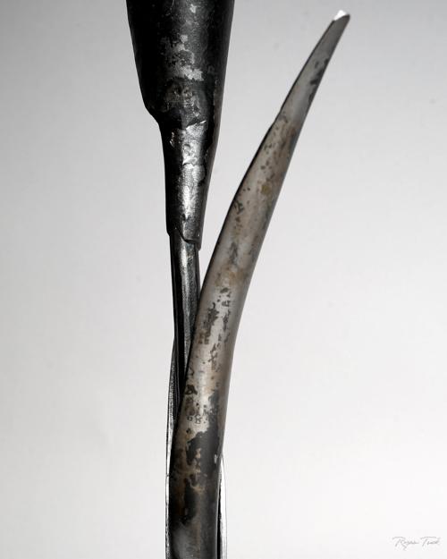 ryantuckblacksmith.calililly.sculpture-3.jpg