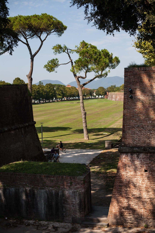 tuscany-3122.jpg