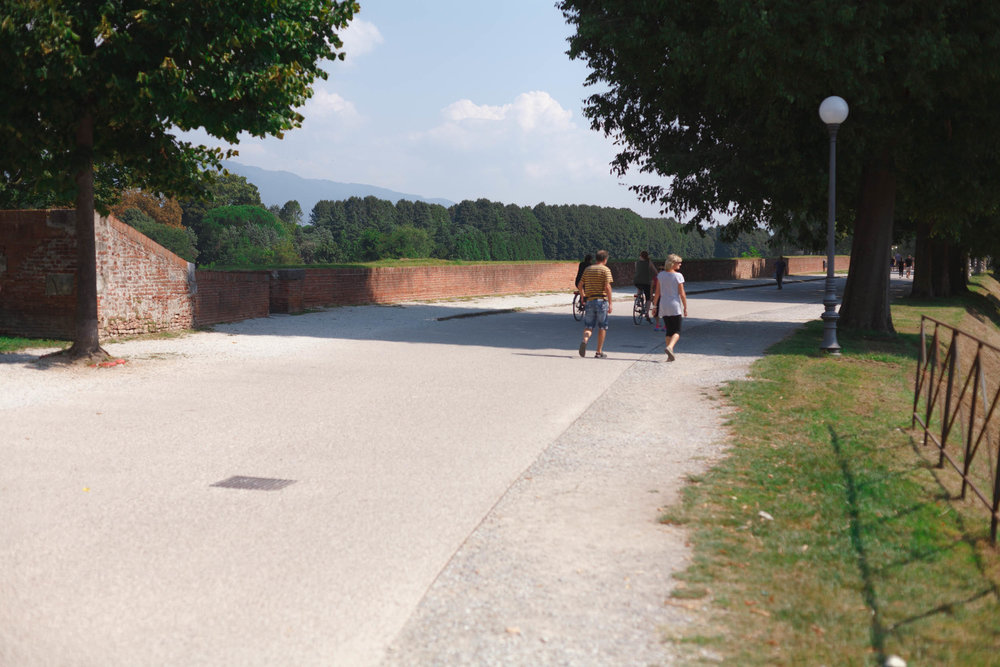 tuscany-3148.jpg
