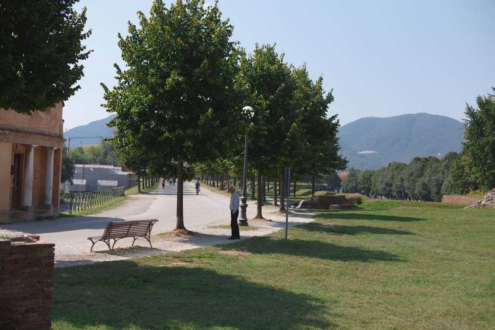 tuscany-3153.jpg