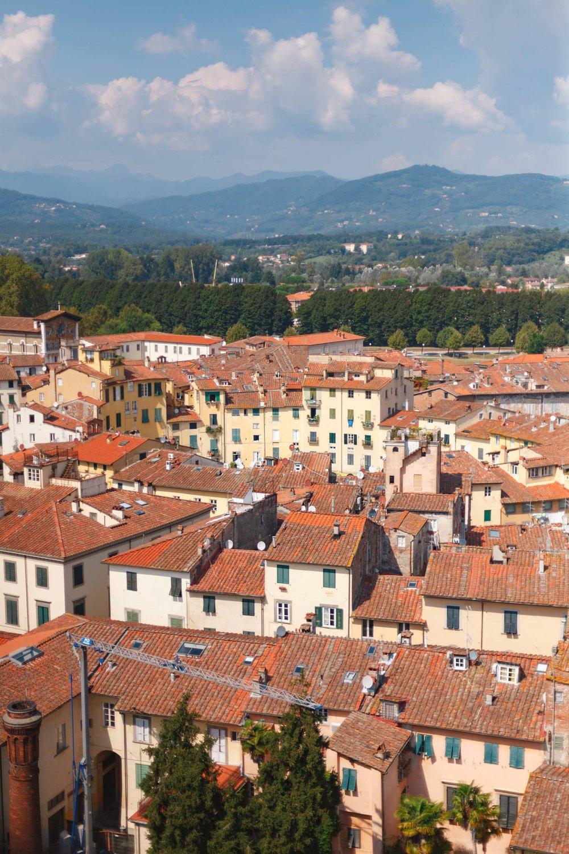 tuscany-3235.jpg