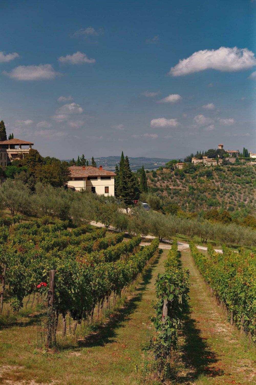 tuscany-3507.jpg