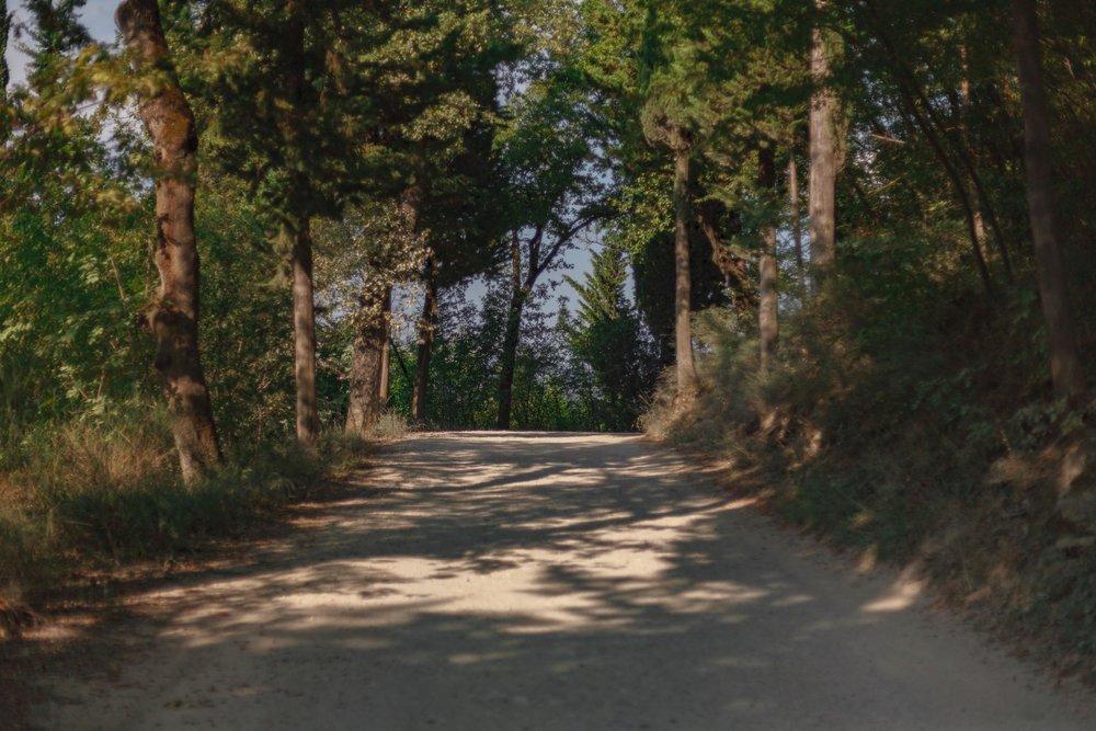tuscany-3665.jpg