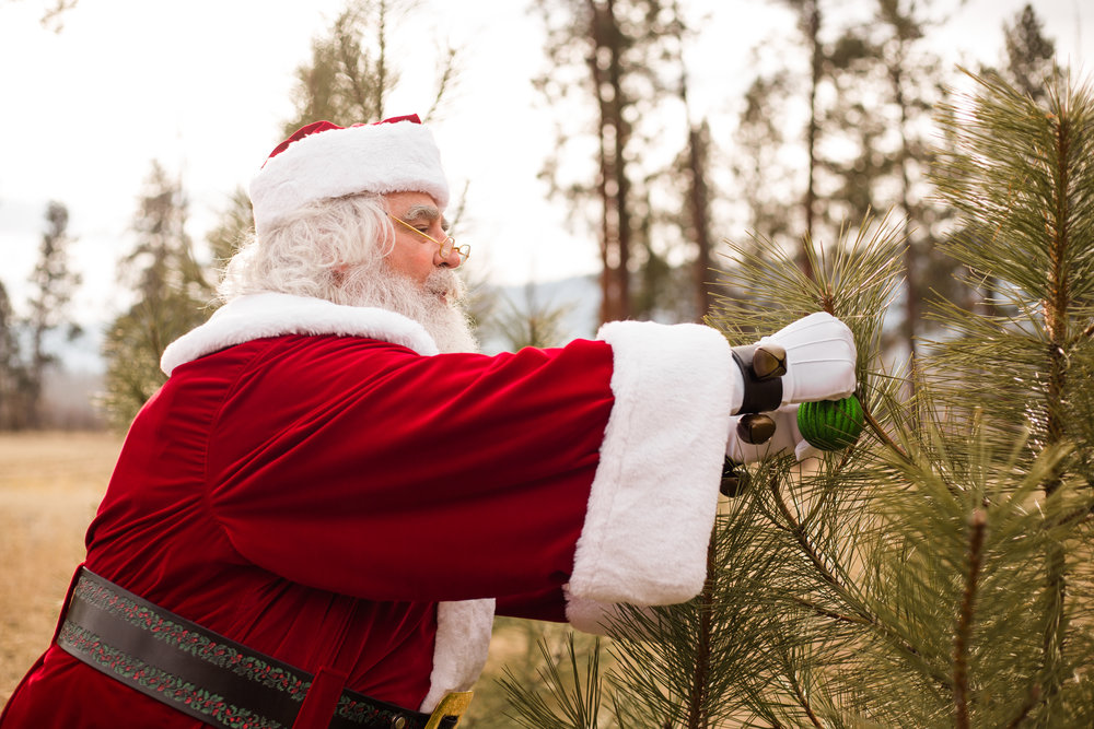 missoula-montana-christmas-santa-photos-5.jpg