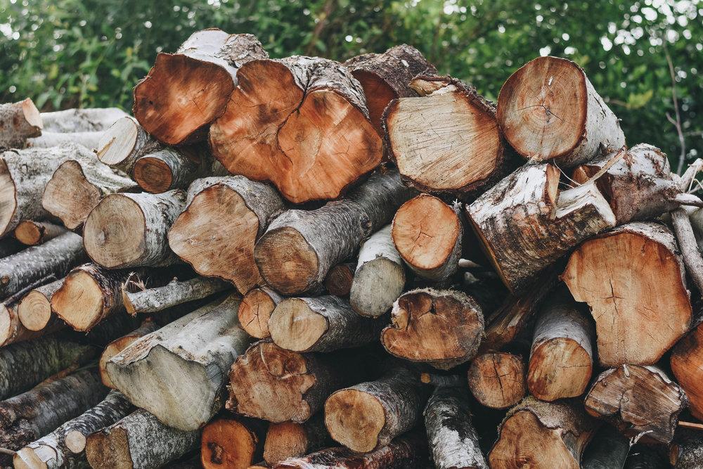 Fire Wood   Glenbeigh, Ireland   June 2016