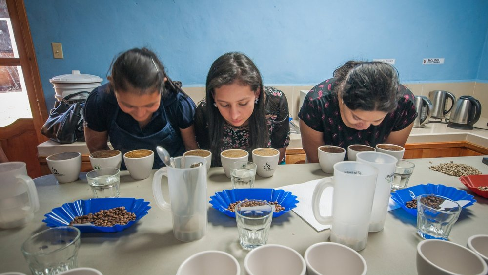 Central America cupping.jpg