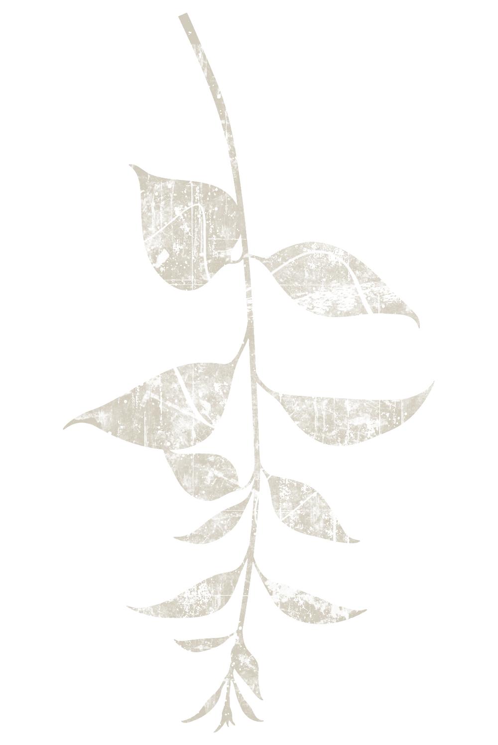 Leaf_BIC.jpg