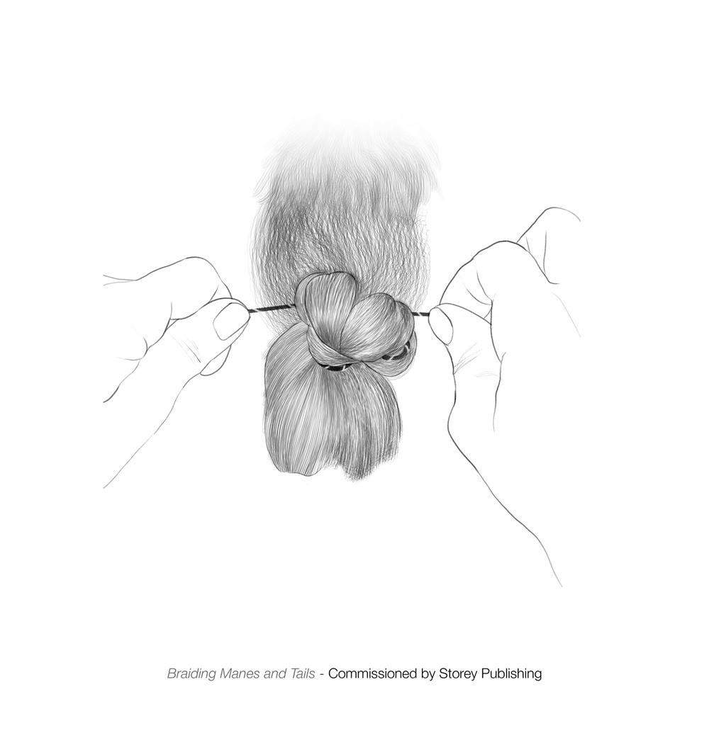 Tying Knot in Braid.jpg
