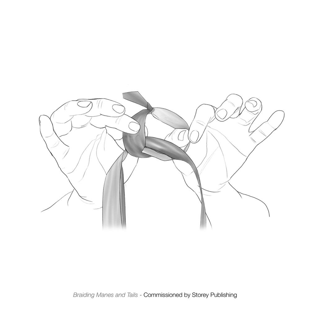 tying knot.jpg