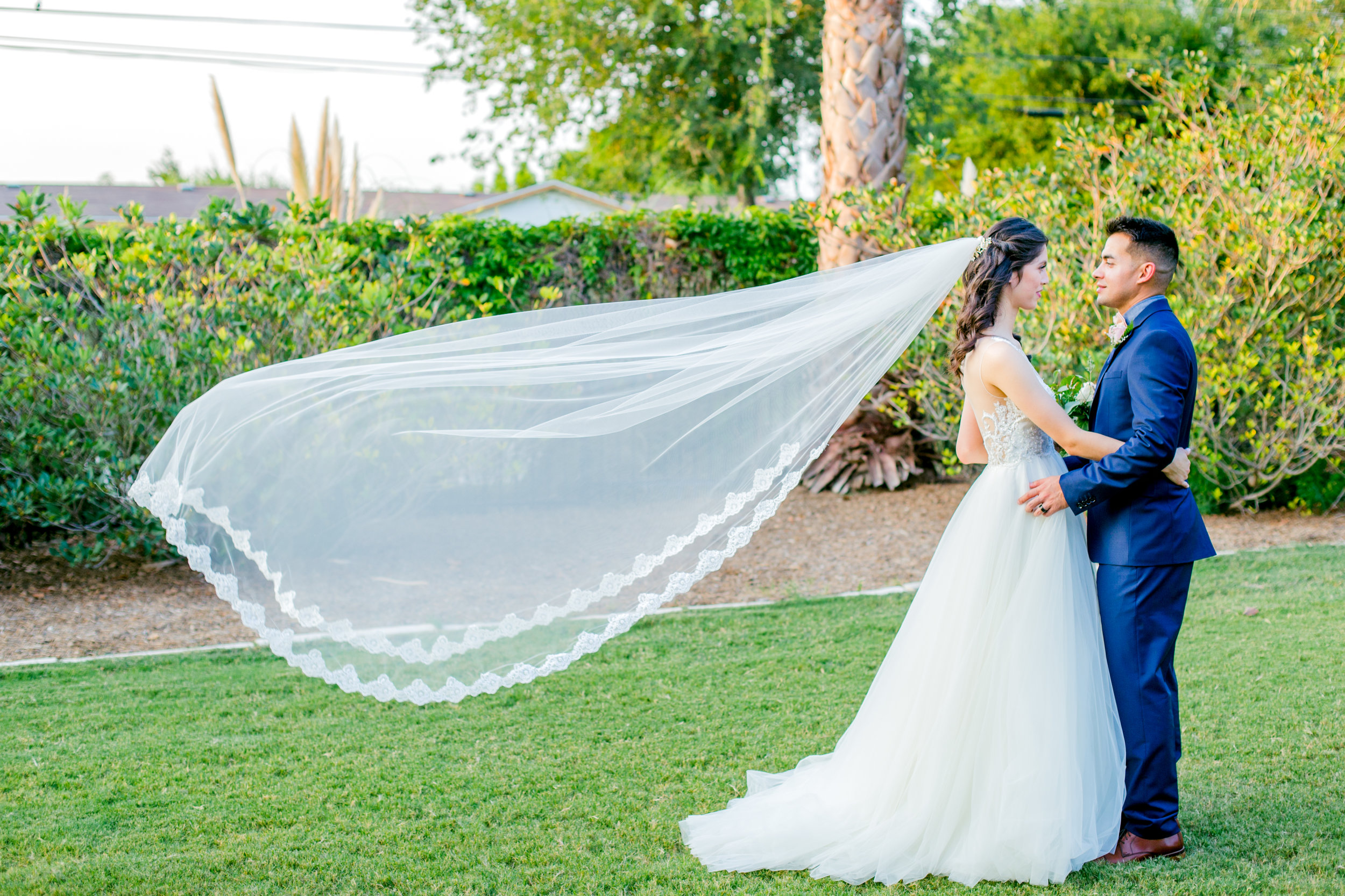 Fine Bridal Gowns In San Antonio Ornament - Wedding and flowers ...
