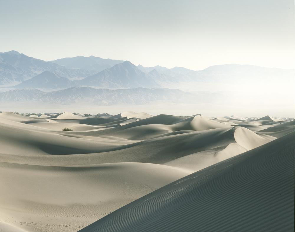 DV-dunes2.jpg