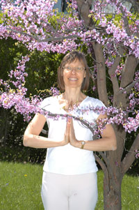 redbud tree & jan2.jpg