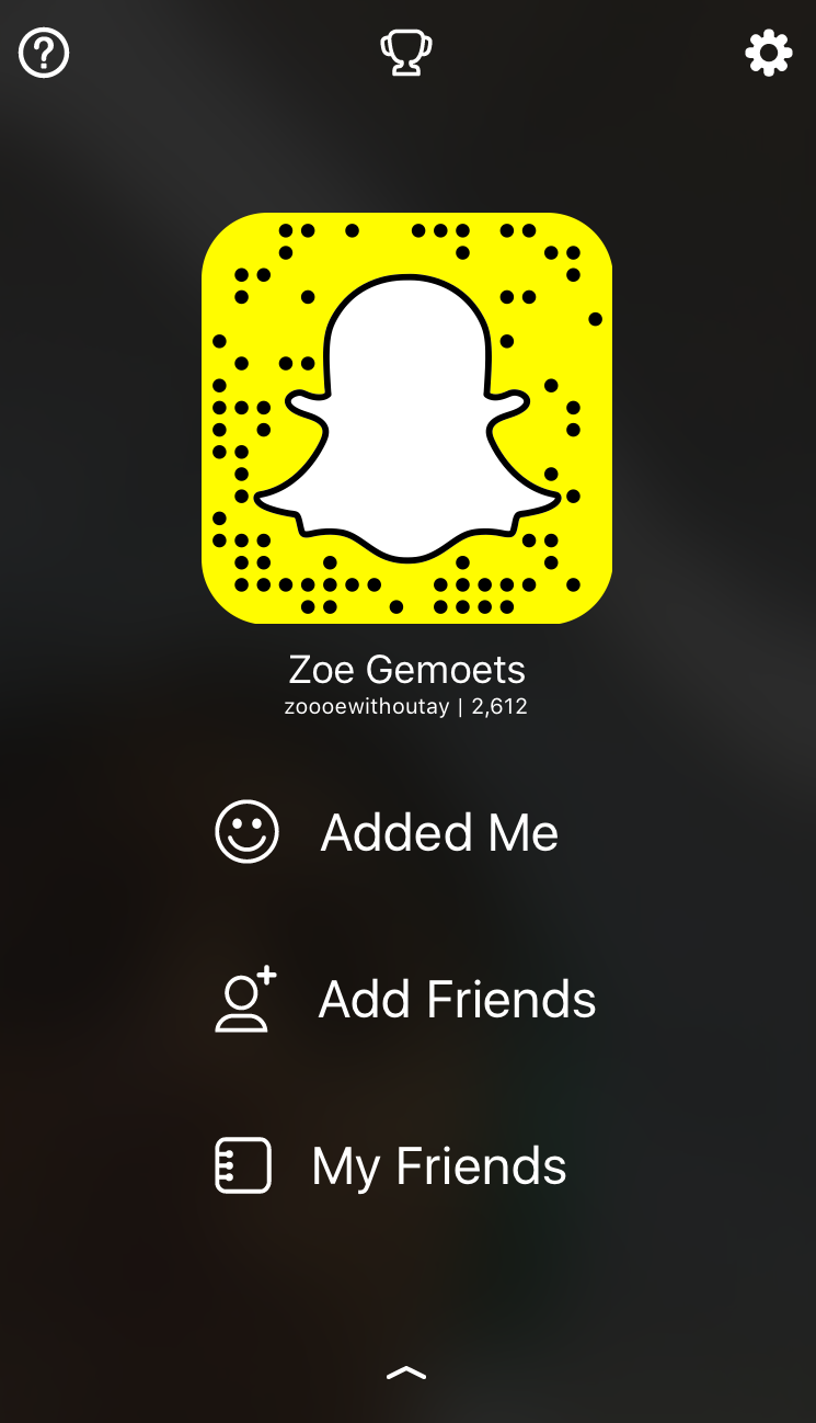 Take a picture with snapchat to add Zoe.