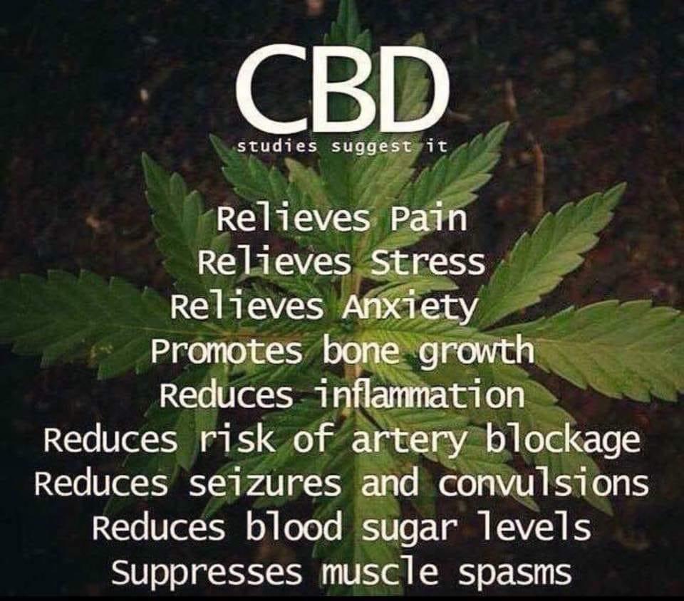 CBD Studies Suggest.